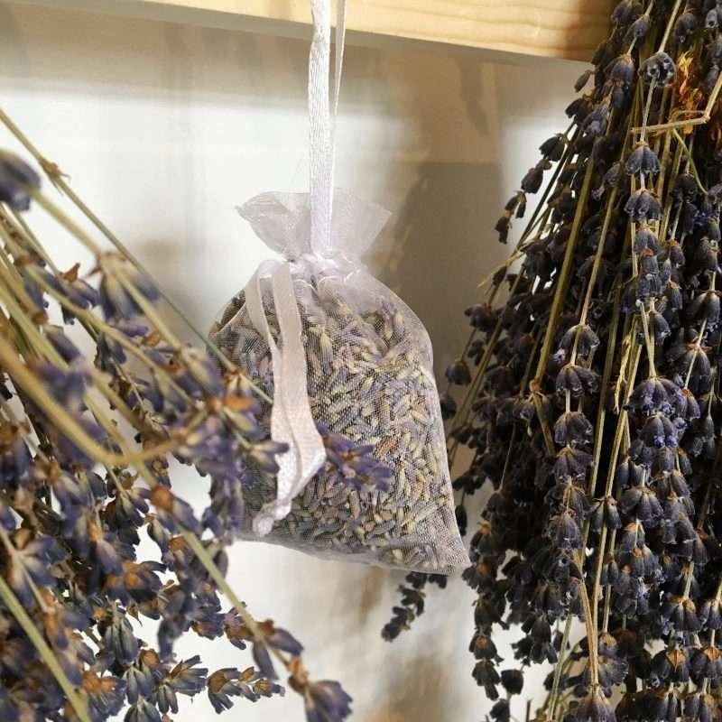 sachets de lavande de Provence bio direct producteur
